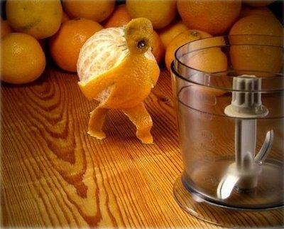 citrus-suicide-1